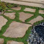 flagstones with grass between